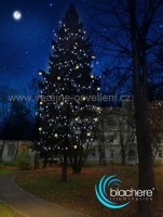Provádíme grafické návrhy Blachere illumination AZ dekorace